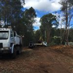 King tree road clearance dardanup before